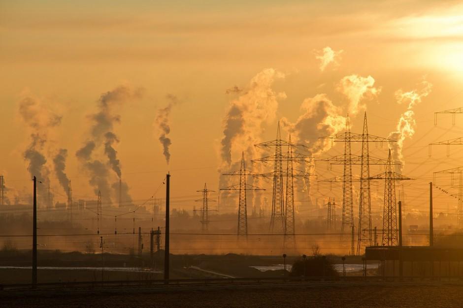 Nowoczesna do rządu: Problem smogu trzeba porządnie rozwiązać