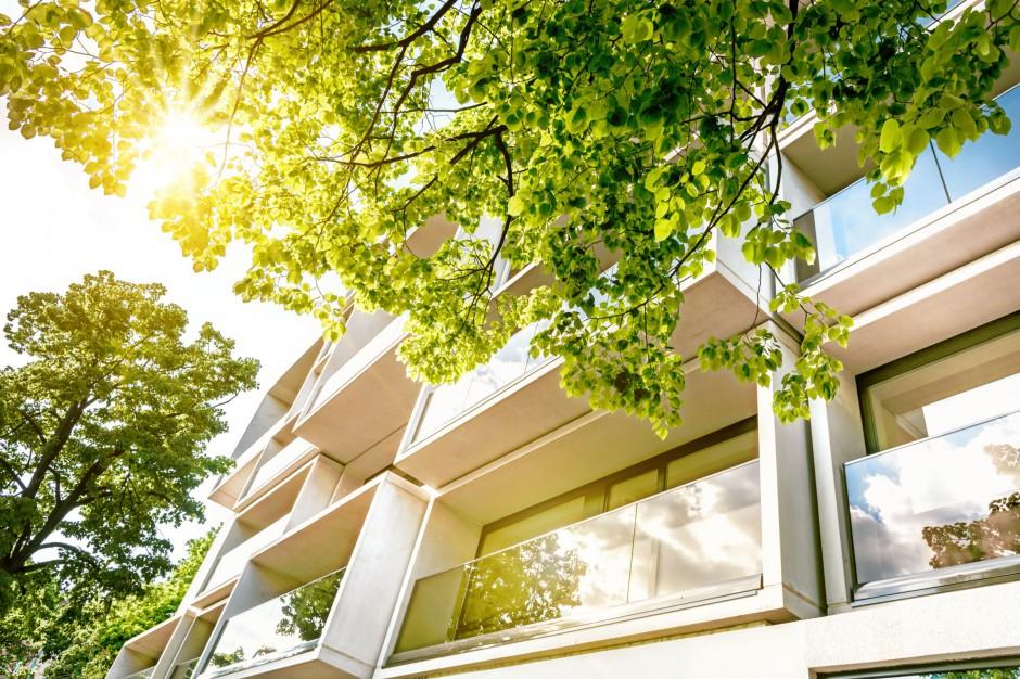 Mieszkanie plus: W ciągu dwóch lat ma powstać 100 tys. mieszkań