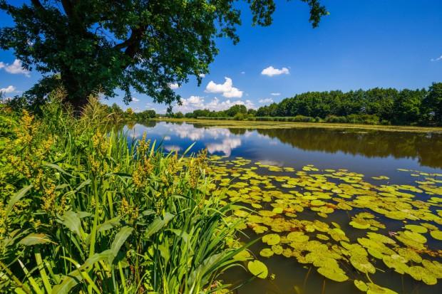 Od początku 2018 r. za gospodarkę wodną w Małopolsce – tak jak w całym kraju - odpowiada nowopowstałe Państwowe Gospodarstwo Wodne Wody Polskie (fot.malopolskie.pl_