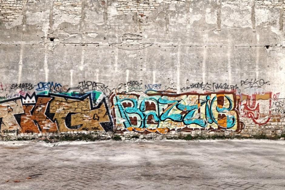 Za nielegalne graffiti 5 lat więzienia? Posłowie kręcą bat na wandali