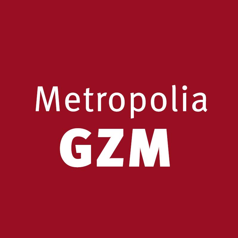 - Jeśli nie zobaczymy zasadniczych zmian, zasadniczej poprawy w funkcjonowaniu komunikacji to myślę, że minister infrastruktury powinien pomóc zarządowi Metropolii, żeby ten problem w jakiś sposób rozwiązać - powiedział poseł PiS. (fot. Facebook/Metropolia GZM)
