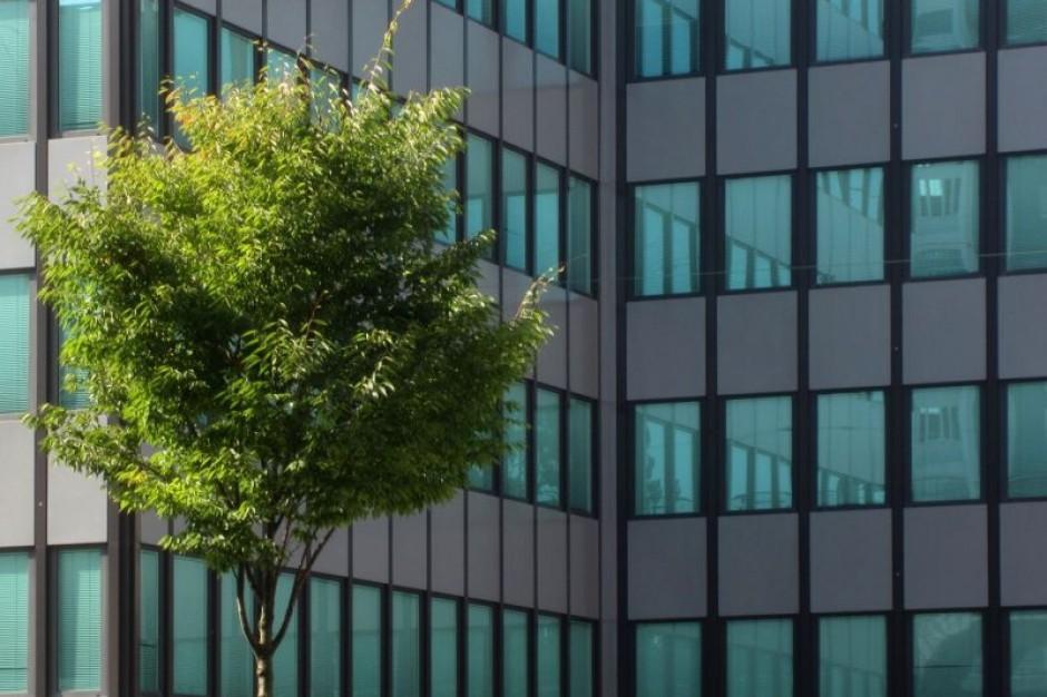 Śląskie: Miejskie plany adaptacji do zmian klimatu na półmetku