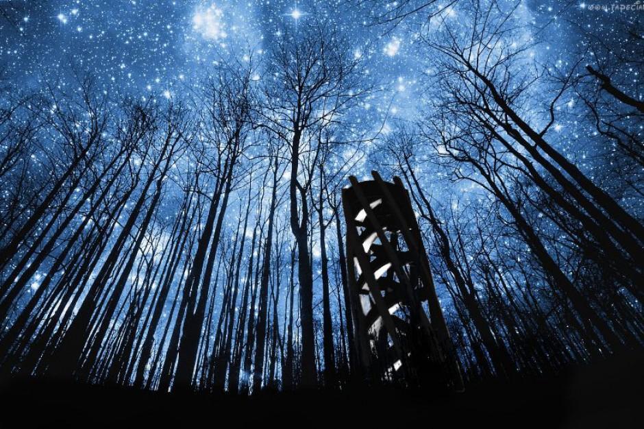 W Słubicach stanie Wieża Kleista – nowa atrakcja turystyczna