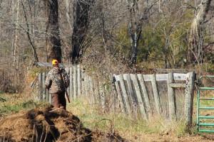 Ekolodzy zwycięzcami czteroletniej batalii o prawo łowieckie