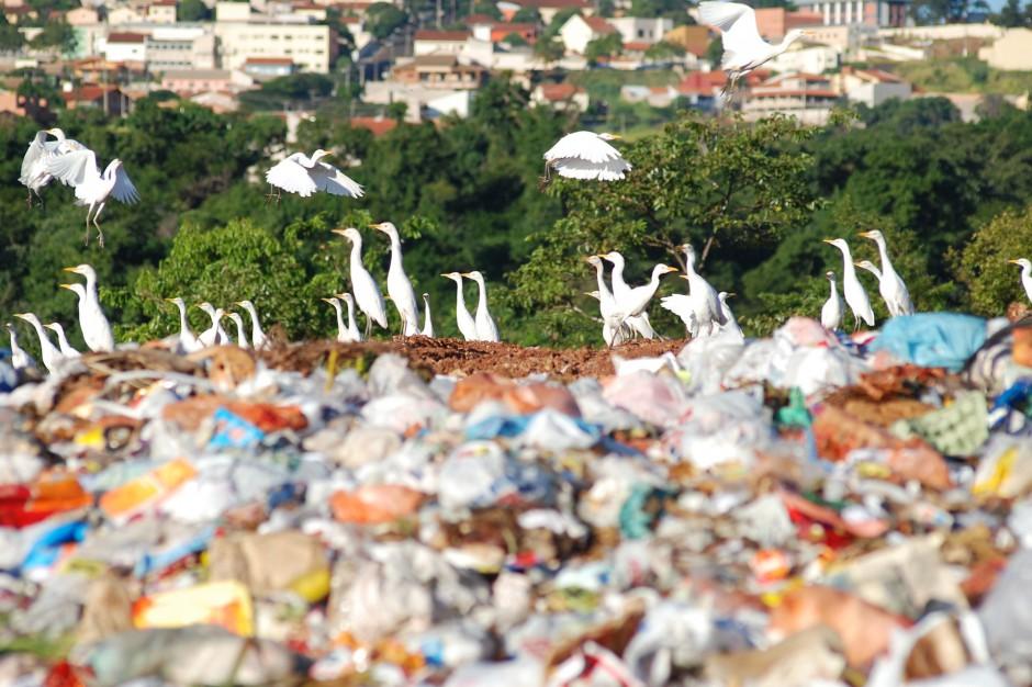 Śmieci zmienią się w benzynę. Pierwszy taki zakład w Polsce
