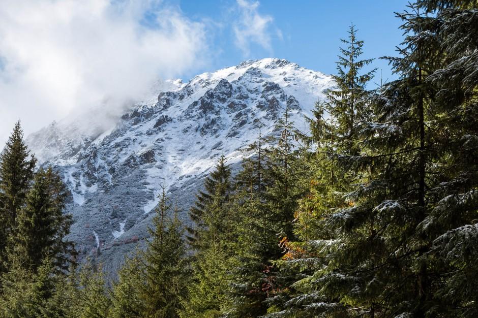 Bieszczady: W górach warunki wczesnowiosenne