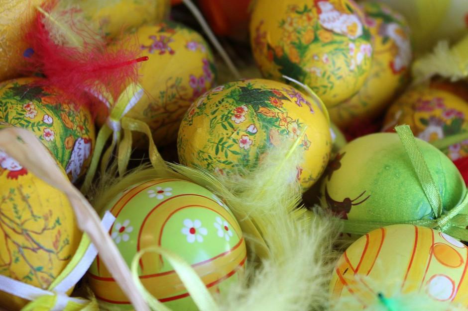 Wielkanoc: produkcja jajek w województwach