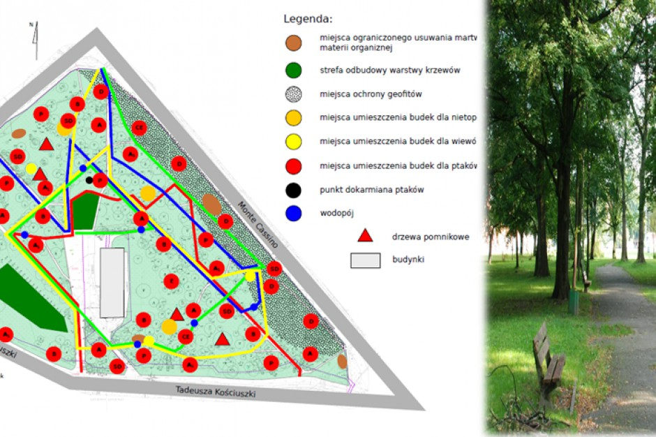 Koszalin: Park w centrum miasta będzie rewitalizowany z pomocą unijnej dotacji