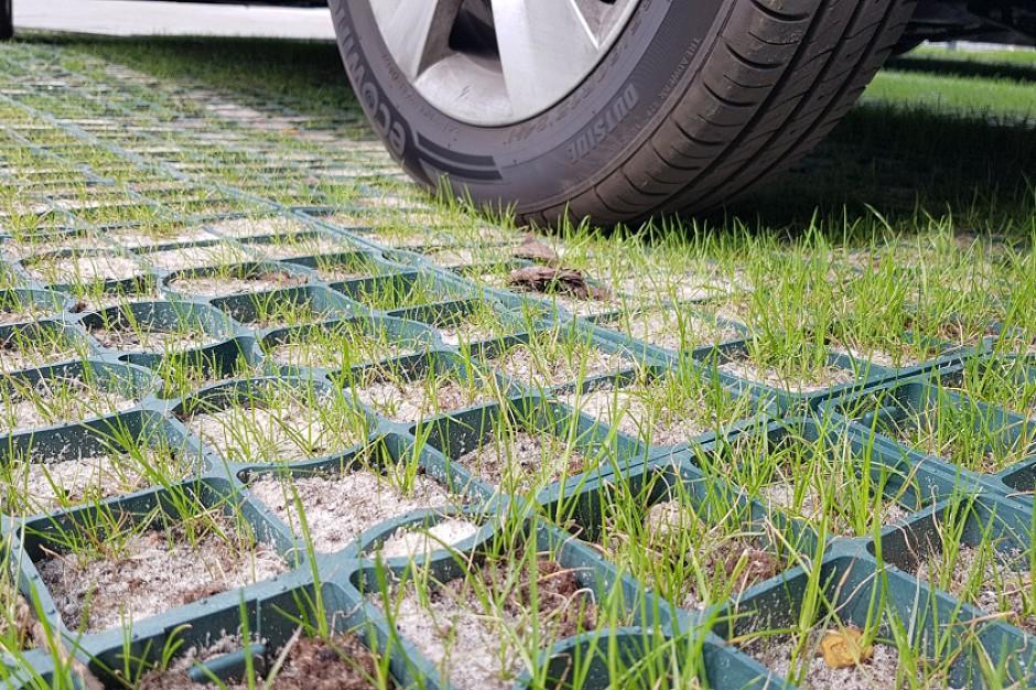 Zielone parkingi w Zielonej Górze rozwiążą problem także z deszczówką
