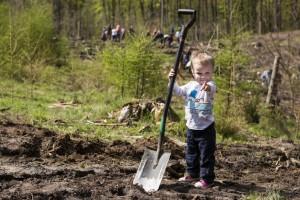 Mieszkańcy posadzą las komunalny