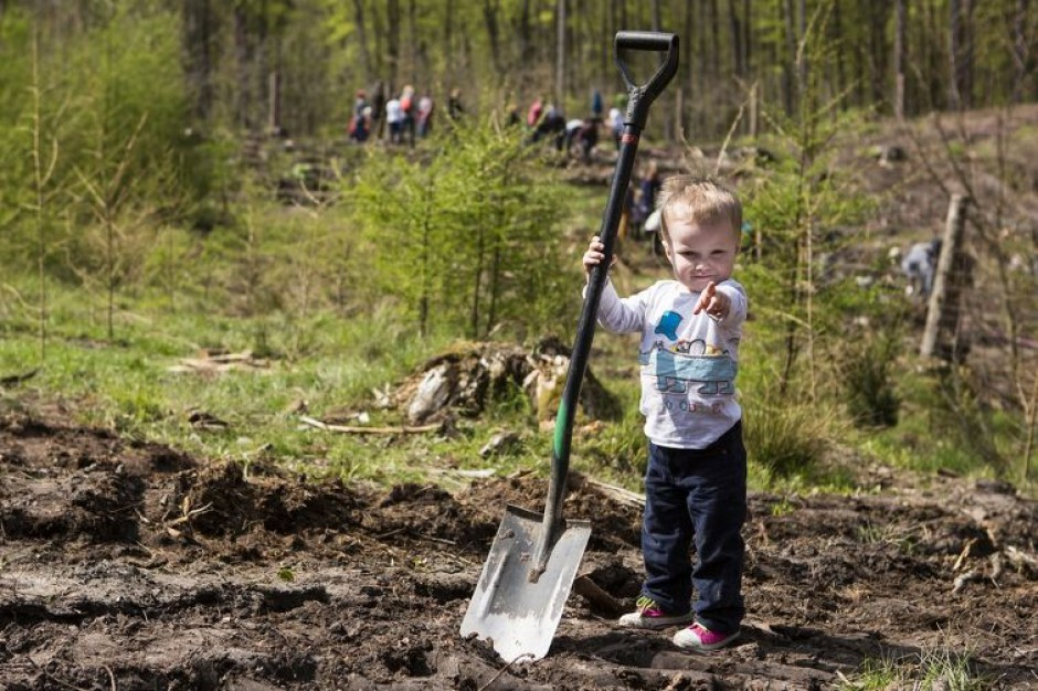 Mieszkańcy Gdańska będą sadzić las komunalny