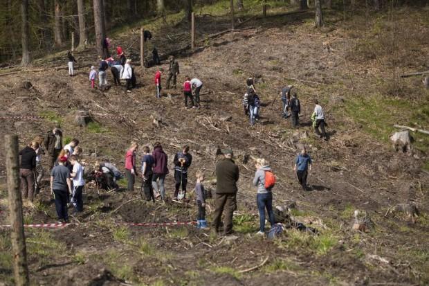 Trójmiejski Park Krajobrazowy w okolicy Niedźwiednika. Akcja sadzenia lasu w 2017 r. (fot:Jerzy Pinkas/gdansk.pl)