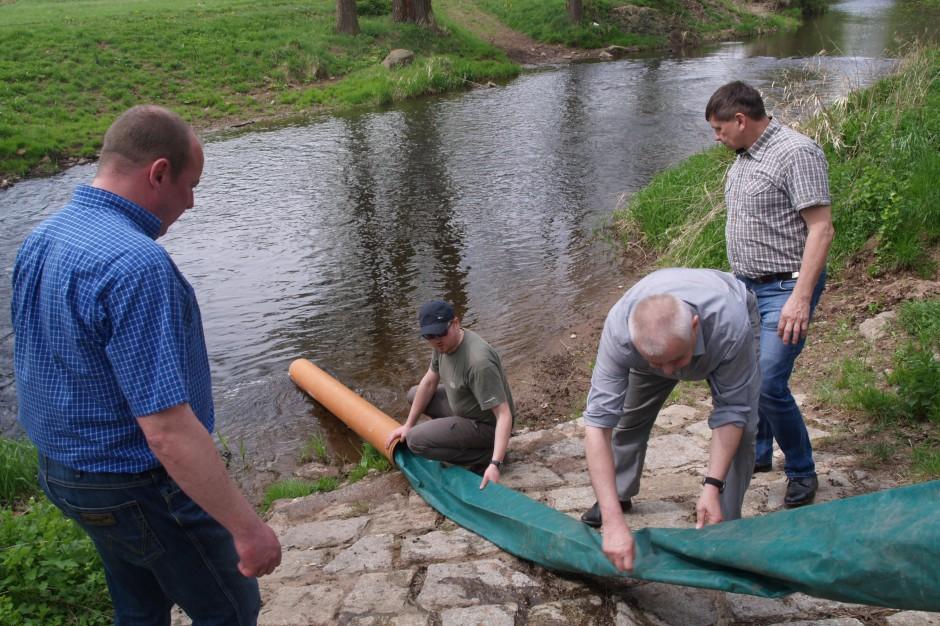 WIOŚ na ratunek pstrągom w dolnośląskich rzekach