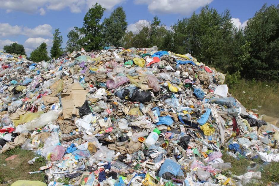 Nadciąga kryzys śmieciowy. Będzie temat przed wyborami samorządowymi