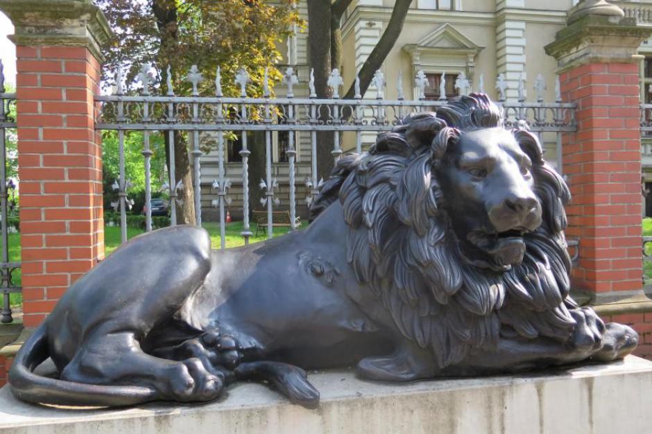 Gliwice: rzeźba czuwającego lwa przejdzie renowację