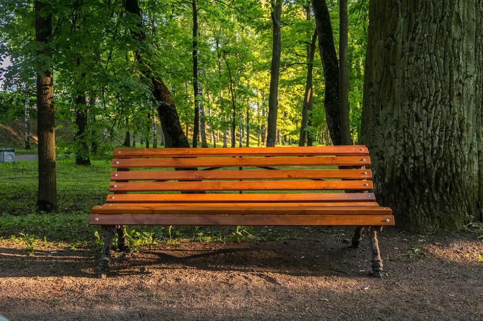 Parki miejskie. Blisko 90 proc. Polaków zadowolonych z ich jakości