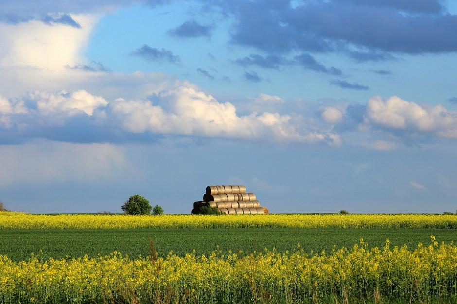 Opolskie inwestuje w atrakcyjność wsi