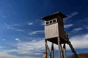 Trybunał Konstytucyjny zajmie się nowelą Prawa łowieckiego?