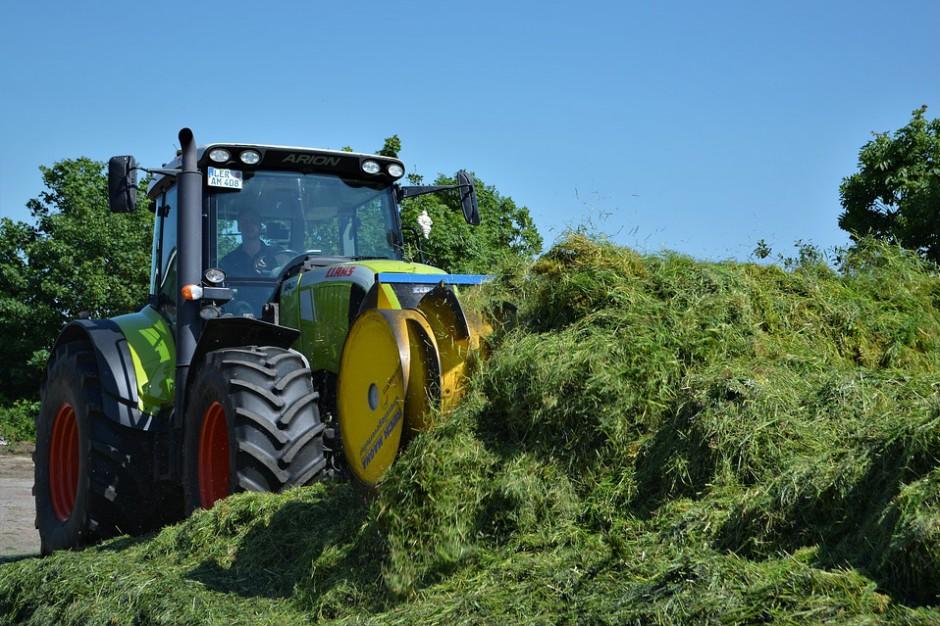 Budżet UE: Rząd powinien walczyć o dotacje dla rolników - uważa prezes PSL