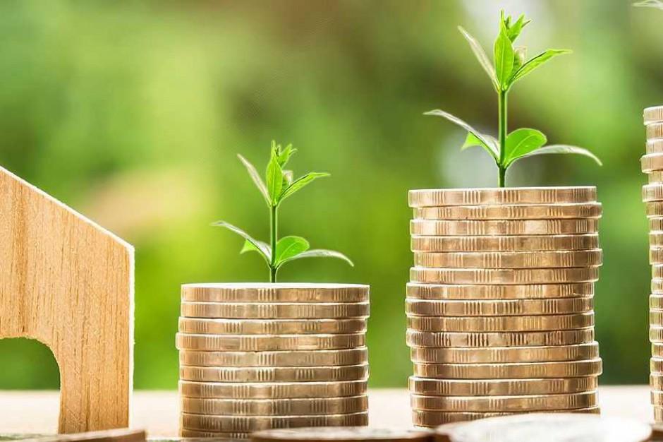 Spore oszczędności po reformie wojewódzkich funduszy ochrony środowiska