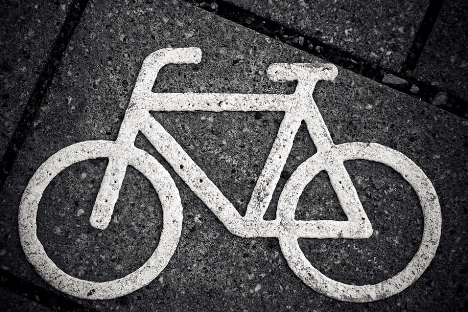 Warszawa sprząta ścieżki rowerowe