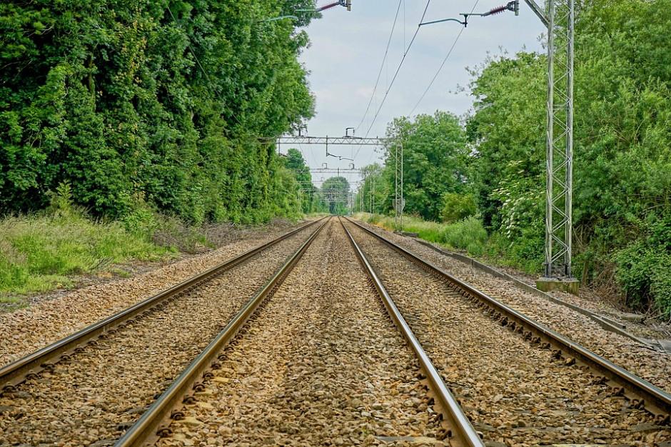 Dodatkowe pociągi Polregio na Podkarpaciu. Pojedziemy do Sandomierza i na Słowację