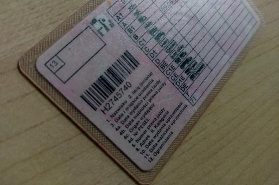 Lubuskie: Oszukiwał, oferując fałszywe prawa jazdy