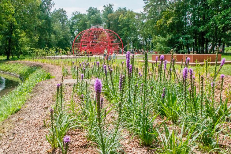 Gliwicki Park Chrobrego gotowy po modernizacji