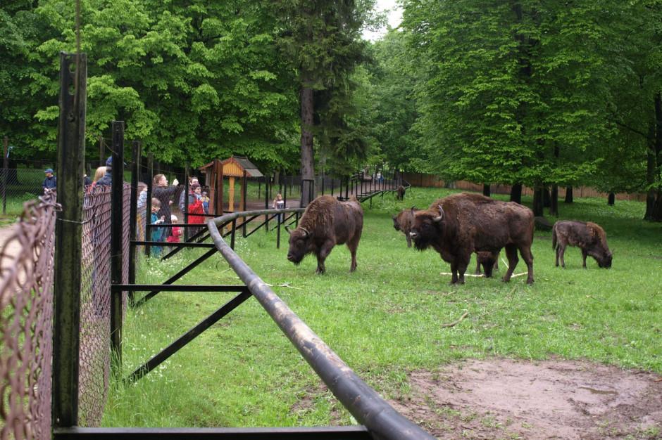 Bilety wstępu i opłaty dodatkowe w polskich parkach narodowych