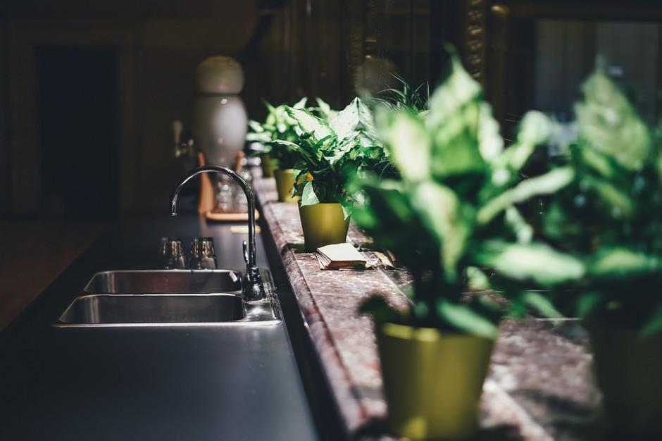 Woda w części gminy Kosakowo skażona bakteriami coli. Samorząd oczyszcza wodociągi