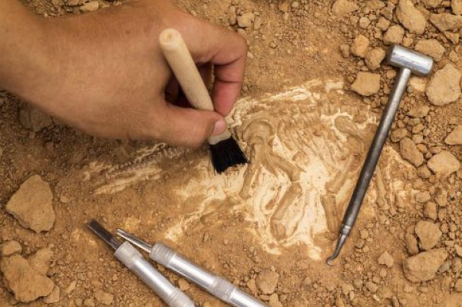 Małopolska: Jaskinię zamieszkaną przez tysiące lat badają archeolodzy
