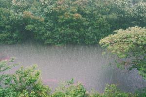 Małopolskie: Znów ulewy i znów woda zalewa domy