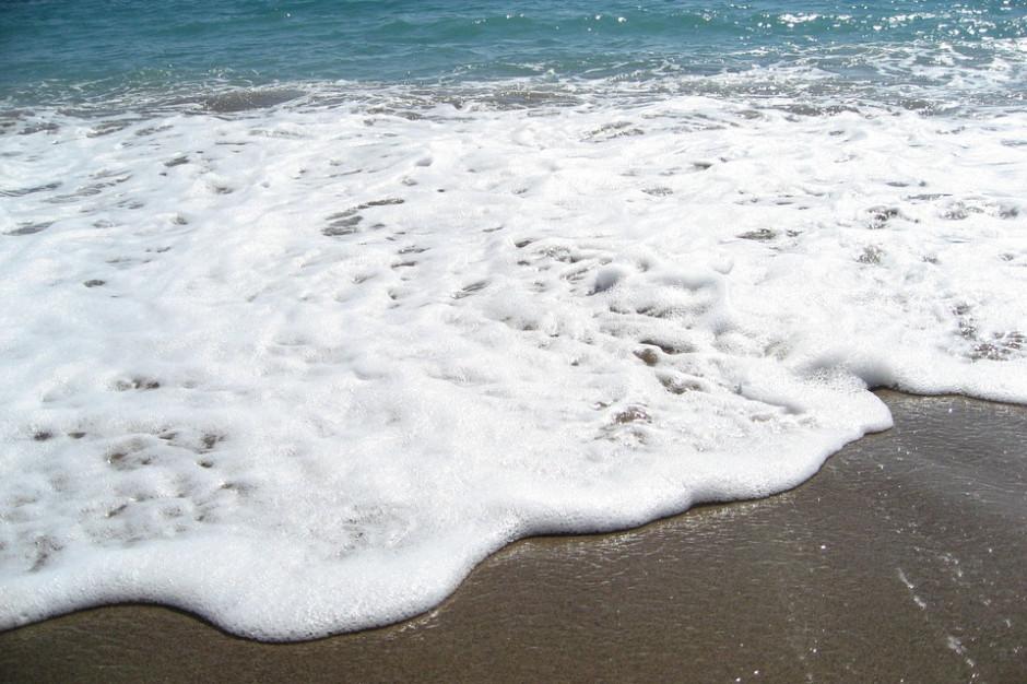 Zakaz kąpieli w Trójmieście. Prawie wszystkie plaże zamkniętych z powodu sinic