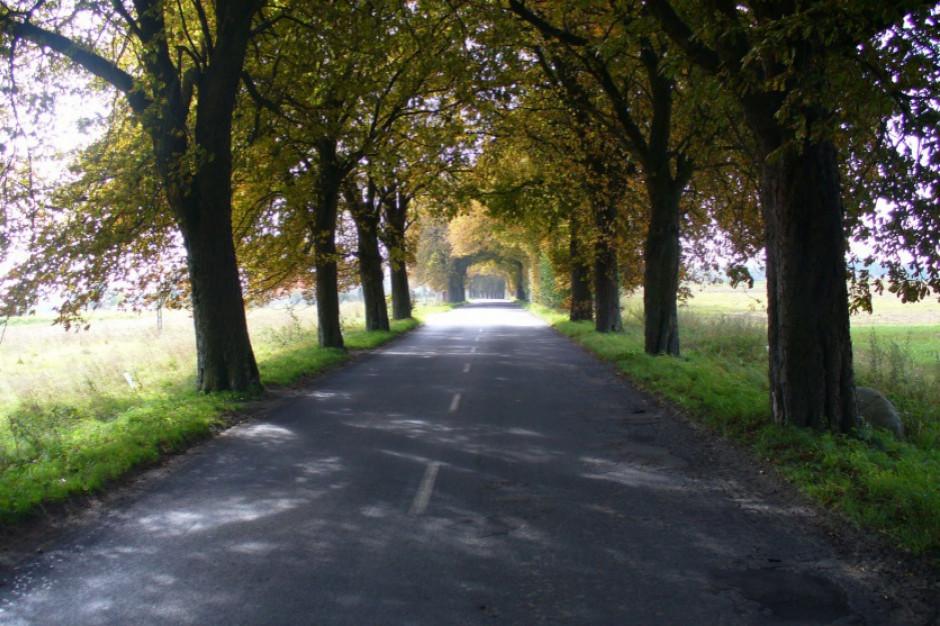 Samorządy północno-zachodniej Wielkopolski otrzymały rządową dotację na modernizację dróg