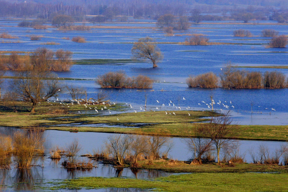 NFOŚiGW przekaże dotację Biebrzańskiemu Parkowi Narodowemu na wykup gruntów