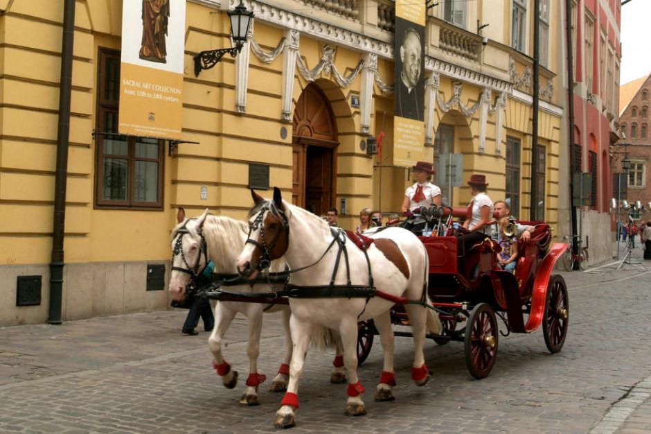 Upały w Małopolsce. Kraków zapewnia, że dba o konie dorożkarskie