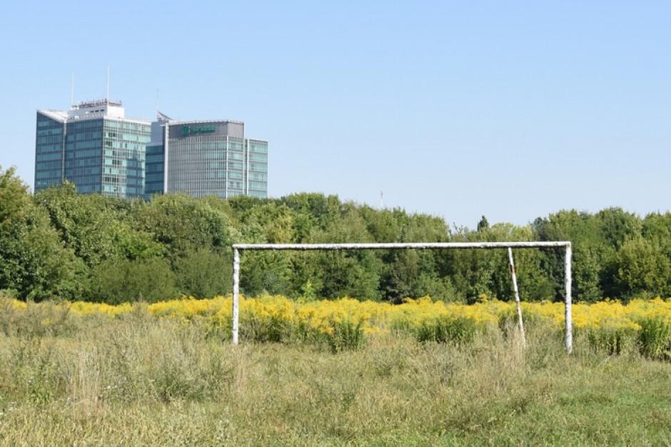 Stadion Szyca w rękach Poznania. Jakie plany ma wobec terenu miasto?
