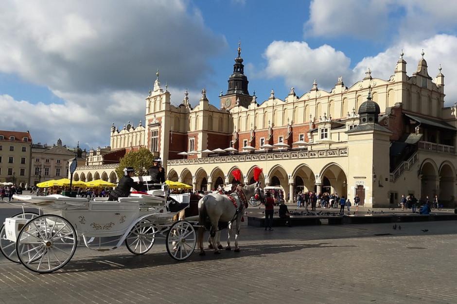 Konie dorożkarskie w Krakowie cierpią? Prokuratura wszczęła śledztwo