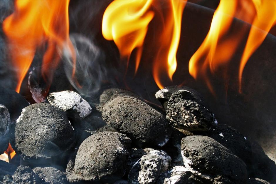 """""""S"""" do premiera: Program Czyste Powietrze eliminuje węgiel"""