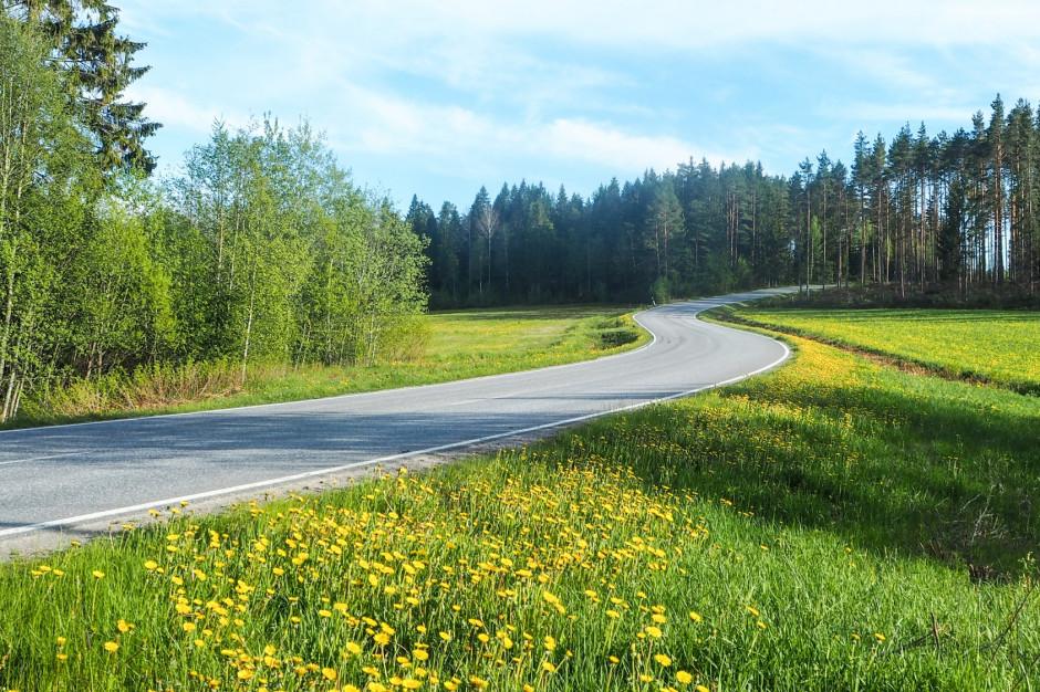 Pieniądze z Lasów Państwowych pójdą na Fundusz Dróg Samorządowych