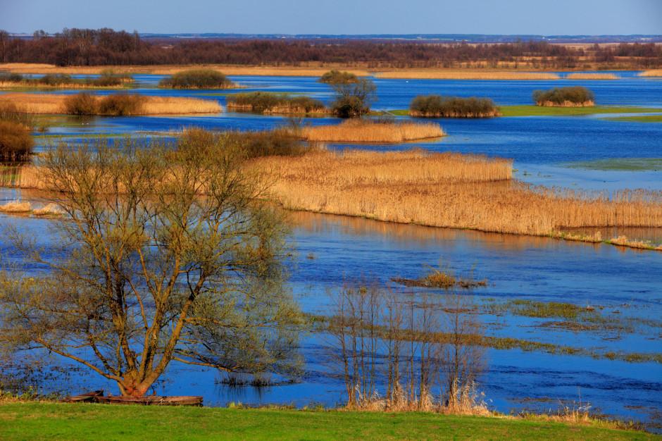 W Polsce może powstać odpowiednik amerykańskich park rangers