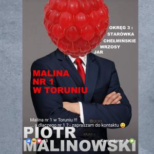 Startujący do toruńskiej rady miasta Piotr Malinowski postanowił twórczo wykorzystać swoje nazwisko. Na wyborczym plakacie pręży się z wielką maliną zamiast głowy. To nie pierwszy raz, gdy Malinowski zaskakuje wyborców. Kilka lat temu przy okazji wyborów postanowił zafundować sobie ostrą dietę odchudzającą (stracił kilkanaście kilogramów), ale mandatu nie zdobył.