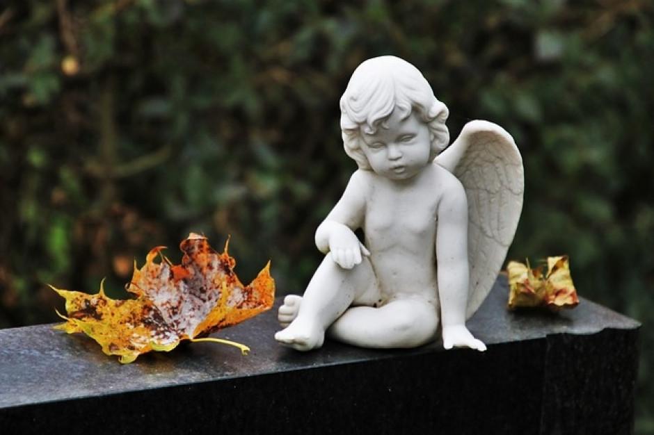 Gorzów Wielkopolski: Cmentarz ma swoją stronę internetową