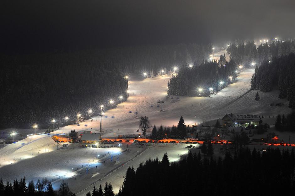 Zieleniec (fot. Emeryk III/ Shutterstock.com)