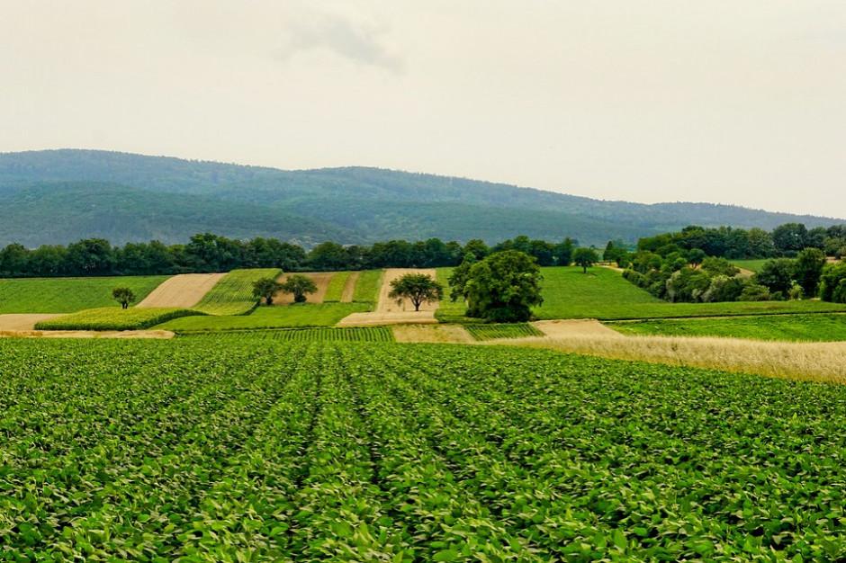 Scalanie gruntów w woj. dolnośląskim. Gminy mają szanse na wielomilionowe inwestycje