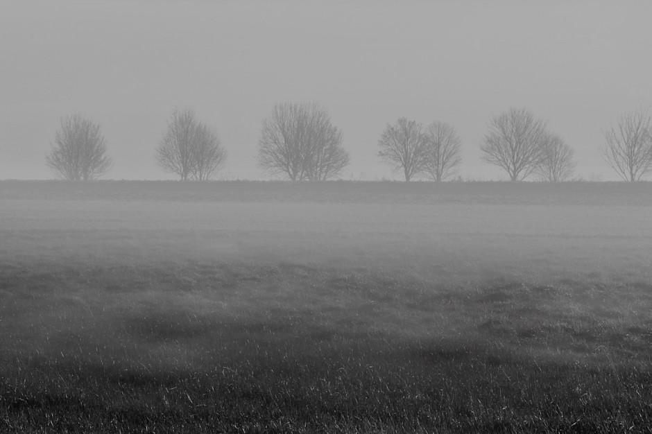 IMGW: Mgły w Polsce. Ostrzeżenia dla ośmiu województwach