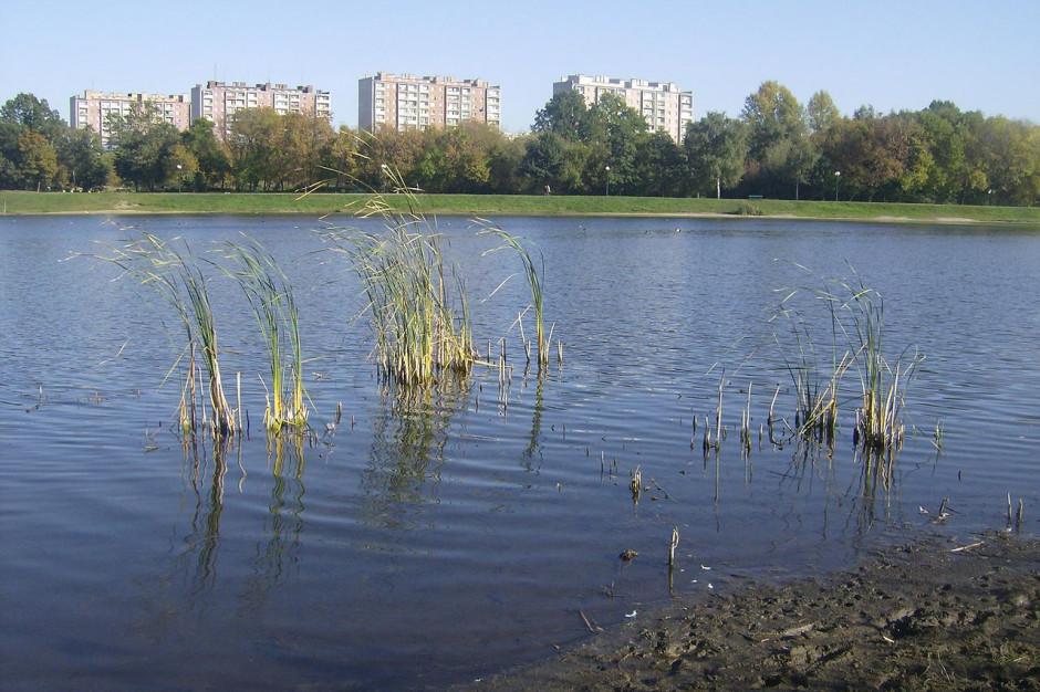 Radom: Oczyszczenie zalewu na Borkach w ramach projektu LIFE