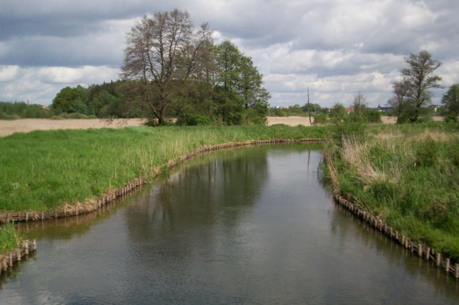 Zarzuty za zanieczyszczenie rzeki Łyna