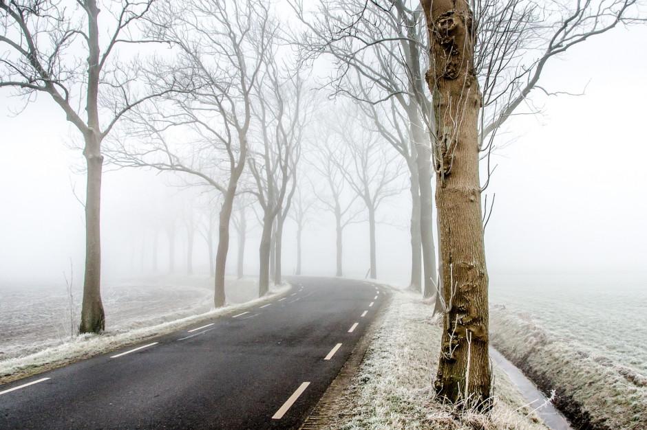 IMGW: Opady śniegu w Polsce. Ostrzeżenie dla pięciu województw