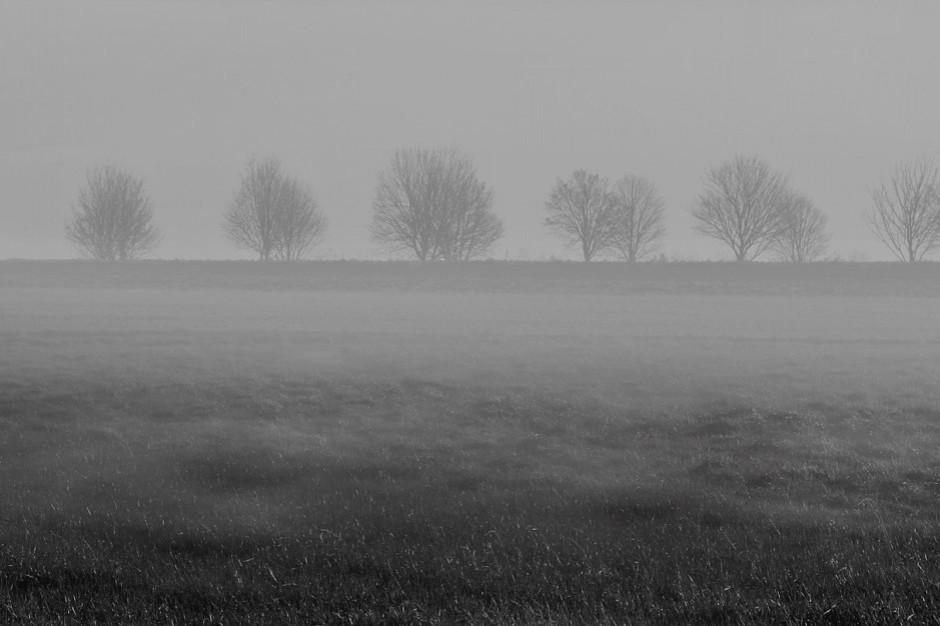IMGW: marznące opady na wschodzie Polski, silna mgła w centrum